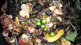 Food waste and recyclables